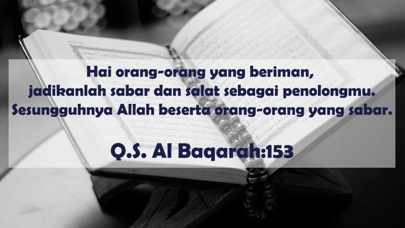 Kata Kata Bijak Islam Tentang Kehidupan Yang Menyejukkan