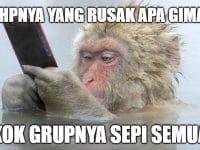 Meme Lucu Grup Sepi - Monyet Menggunakan HP