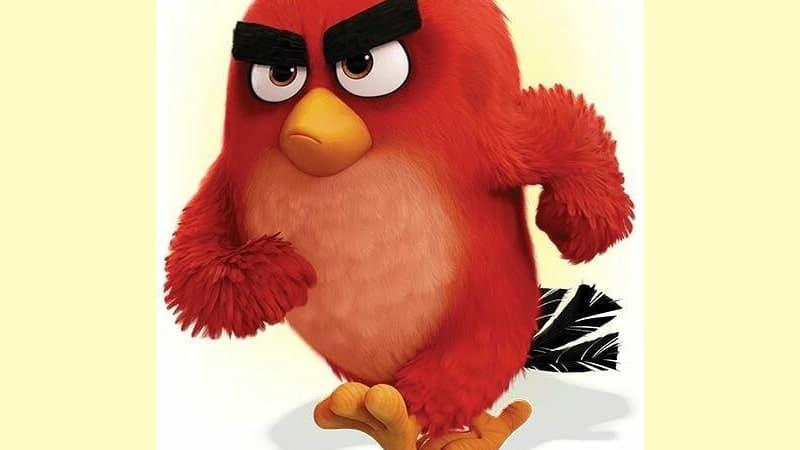 Gambar DP Lucu Banget Bikin Ngakak - Angry Bird