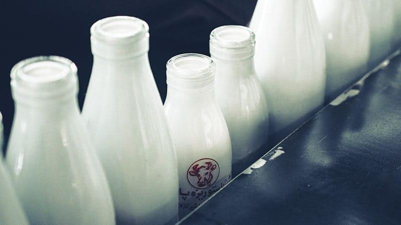 manfaat minum susu - industri susu