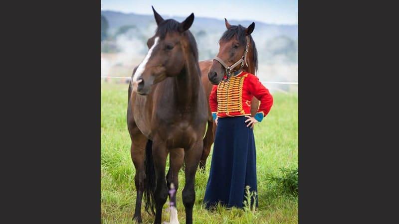 kumpulan foto lucu - kepala kuda