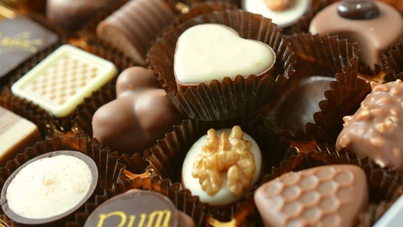 Manfaat Coklat bagi Kesehatan - Aneka Jenis Coklat