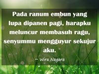 Status WA Bikin Baper - Wira Nagara