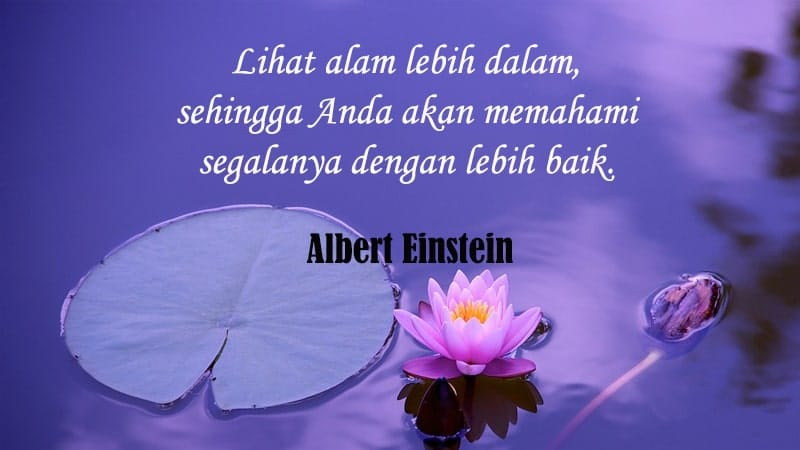 Caption Keren buat Instagram - Caption Quote Albert Einstein
