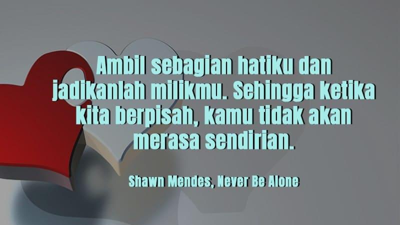 Kata-Kata Inspirasi Cinta - Shawn Mendes
